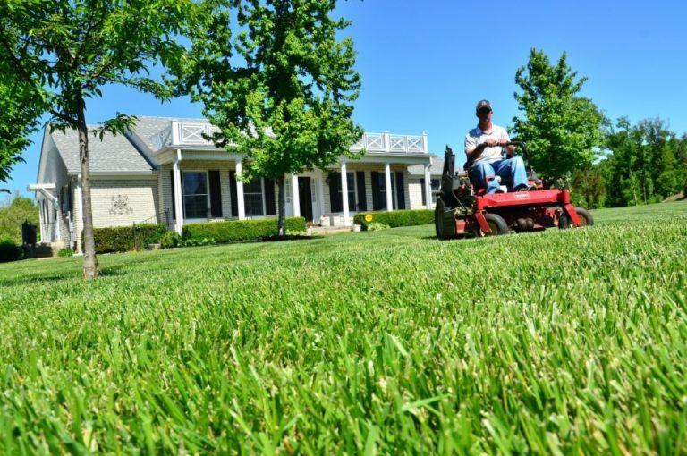 Košnja trave je neophodna za lijep travnjak